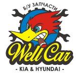 WELLCAR, WellCar