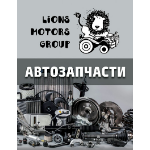 Lions Motors Group